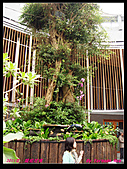 2011年花博新生園區:DSC08605.jpg