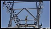 2010年前進彭佳嶼:PIC_6037.jpg