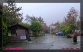 2012年歲末東埔溫泉之旅:L1000569.jpg