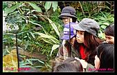 2011年花博新生園區:DSC08610.jpg