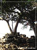 2010年福源山步道:DSC08528.jpg