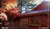 2011年福壽山農場:IMGP2817.jpg