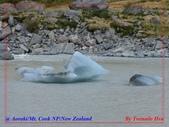 2020 紐西蘭〜庫克山國家公園:L1250254.jpg