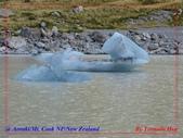 2020 紐西蘭〜庫克山國家公園:L1250266.jpg