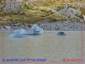 2020 紐西蘭〜庫克山國家公園:L1250268.jpg