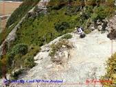 2020 紐西蘭〜庫克山國家公園:P1276466.jpg