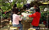 2010年福源山步道:DSC08538.jpg