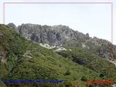 2020 紐西蘭〜庫克山國家公園:P1276477.jpg
