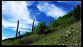 2010年雪山行:PIC_5468.jpg