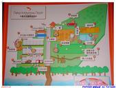 2005年彩虹的故鄉:帛琉:IMGP0745.jpg