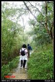 2012年四獸山步道:IMGP4208.jpg