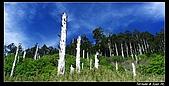 2010年雪山行:PIC_5469.jpg