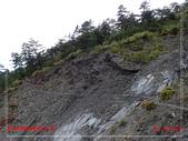 能高越嶺國家步道:PA104257.jpg