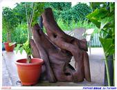 2005年彩虹的故鄉:帛琉:IMGP0754.jpg