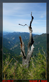 2011年我在北峰天氣晴:IMGP0403.jpg