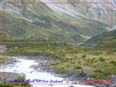 2020 紐西蘭〜庫克山國家公園:L1250209.jpg