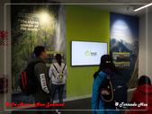 2020 紐西蘭〜蒂阿瑙湖:P2017100.jpg