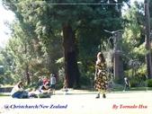 2020 紐西蘭〜基督城:L1240489.jpg