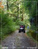 2011年合歡溪步道/天池:IMGP2992.jpg