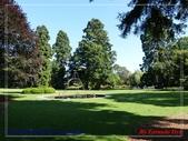 2020 紐西蘭〜基督城:L1240486.jpg