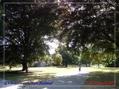 2020 紐西蘭〜基督城:P1245882.jpg