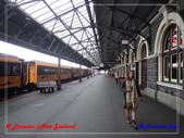 2020 紐西蘭〜但尼丁:P2027456.jpg