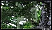 2010年雪山行:PIC_5483.jpg