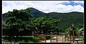 2010年與我同行之花東縱谷&六十石山:PIC_5798.jpg