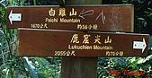 2008年悠遊山林~白雞山:DSC02419.JPG
