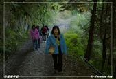2011年合歡溪步道/天池:IMGP2931.jpg