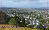 2020 紐西蘭~奧克蘭:L1260118.jpg