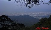 2008年悠遊山林~白雞山:DSC02433.JPG