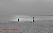 2009年墾丁采風隨拍:PIC_3622.jpg