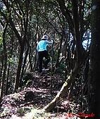 2008年悠遊山林~白雞山:DSC02435.JPG