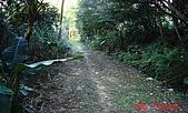 2008年悠遊山林~白雞山:DSC02407.JPG