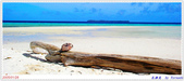 2005年彩虹的故鄉:帛琉:IMGP1000.jpg