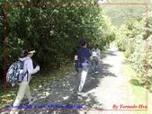 2020 紐西蘭〜庫克山國家公園:P1276400.jpg