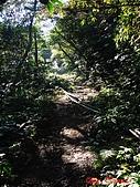 2008年悠遊山林~白雞山:DSC02412.JPG