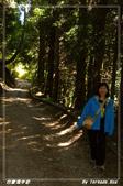 2011年合歡溪步道/天池:IMGP2934.jpg
