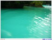 2005年彩虹的故鄉:帛琉:IMGP0778.jpg