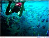 2005年彩虹的故鄉:帛琉:IMGP1010.jpg