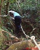 2008年悠遊山林~白雞山:DSC02438.JPG