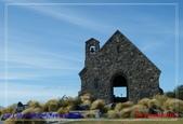 2020 紐西蘭〜蒂卡波湖 :L1240850.jpg
