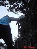 2008年悠遊山林~白雞山:DSC02439.JPG