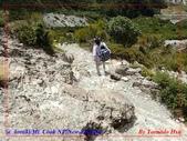 2020 紐西蘭〜庫克山國家公園:P1276467.jpg