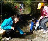 2011年合歡溪步道/天池:IMGP2938.jpg