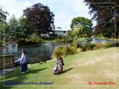 2020 紐西蘭〜基督城:L1240550.jpg