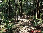 2008年悠遊山林~白雞山:DSC02454.JPG