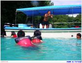 2005年彩虹的故鄉:帛琉:IMGP0784.jpg