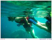 2005年彩虹的故鄉:帛琉:IMGP1020.jpg